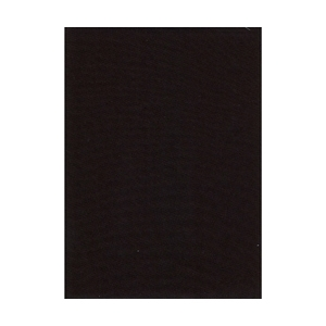 Promaster 10x20ft Muslin Backdrop (black)