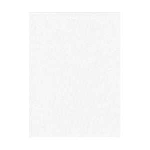 Promaster 10x20ft Muslin Backdrop (white)