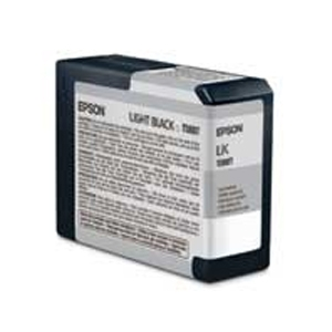 Epson 3800 80ml Light Black T580700