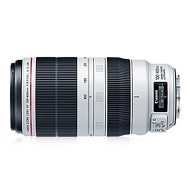 Canon EF 100-400mm F4.5-5.6 II L IS USM Lens