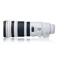 Canon EF 200-400mm F4.0 L IS USM Lens with 1.4x Extender