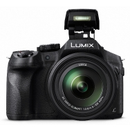 Panasonic Lumix FZ300 Camera (black)